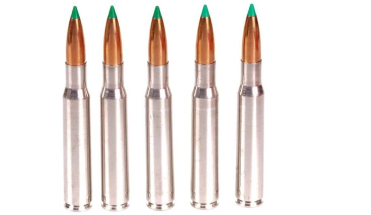 Ballistic tips ammo in a white background.