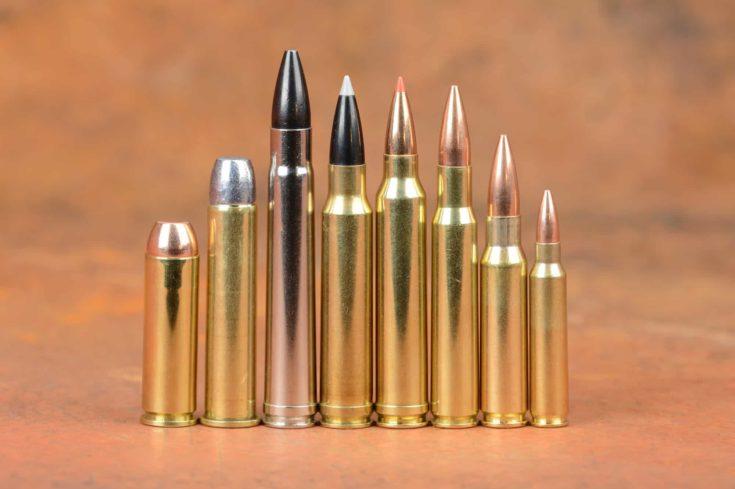 Loaded Cartridges