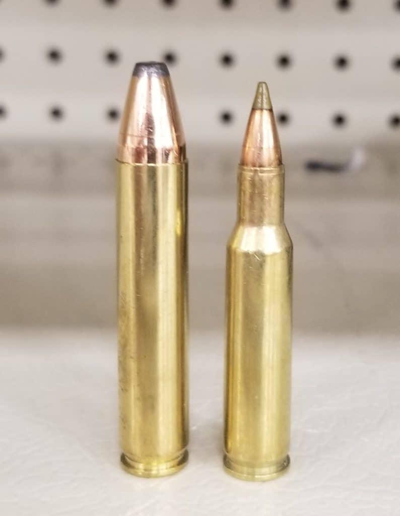 .350 Legend Ammo