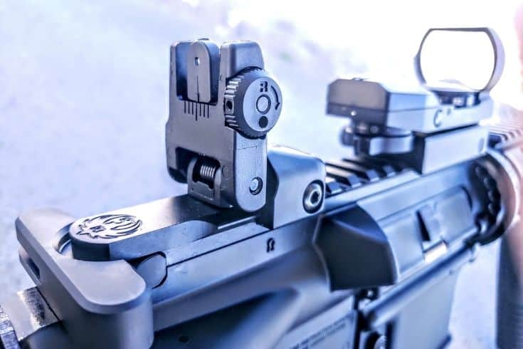 Ruger AR556 Pinckney rail and sight close up picture