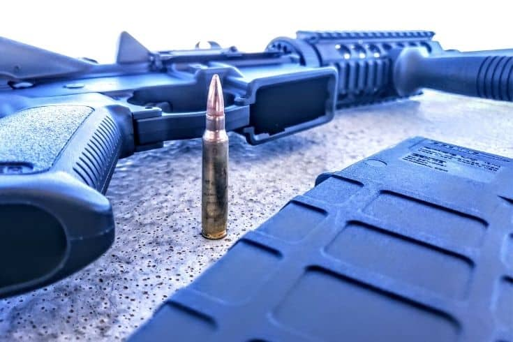 Ruger AR556 Ammo and Magazine clip removed from the rifle